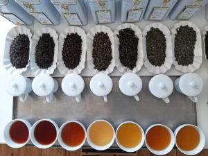 Qualitätstee Ceylon Taiwan, ausgewählte Teegärten, The Tea Company