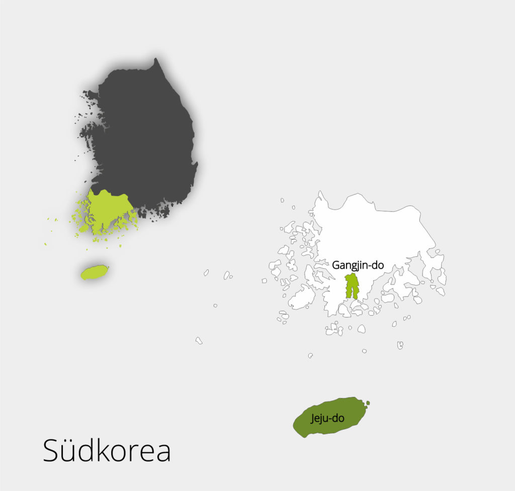 Qualitätstee Südkorea, ausgewählte Teegärten, The Tea Company